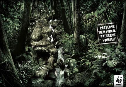 WWF-4