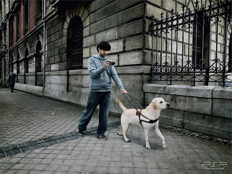 間違った盲導犬の使い方