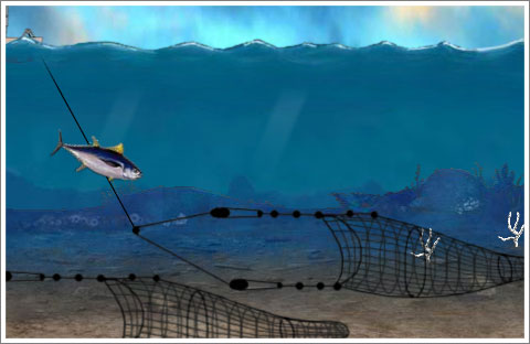 Ocean Survivor Game
