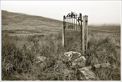 Lonely Gate-2