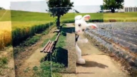 写真の中に逃げ込むウサギを追うサムスンのおもしろCM